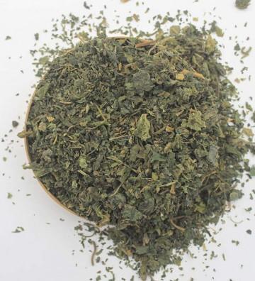 Ortiga verde en hojas